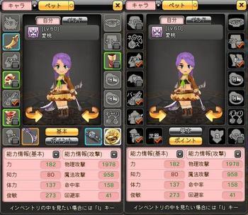 愛桃60制限装備.JPG